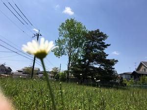 201672112420.JPG