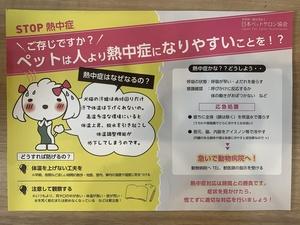 犬の熱中症対策ポスター.jpeg